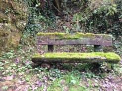 fuzziest bench ever